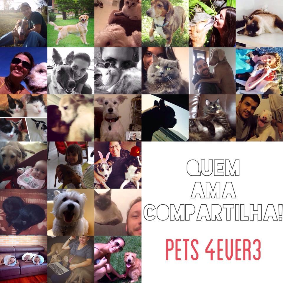 4Ever3/pets4ever3